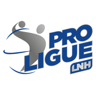 Official ball in the Proligue LNH - France